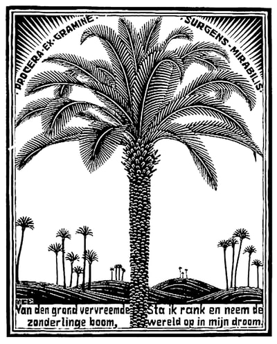 "M.C. Escher, ""Emblemata - Palm Tree"", 1931, woodcut, 7 1/8 x 5 1/2 in., limited-edition of 300,  inscribed in pencil lower margin, initialed ""MCE"" in the block lower left, catalogue raisonné: Bool #167, for sale by Different Trains, an Atlanta art gallery"