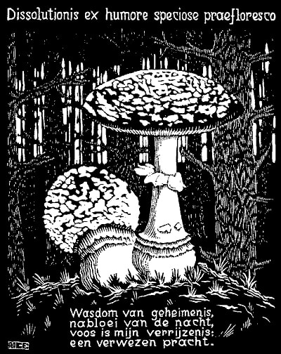 "M.C. Escher, ""Emblemata - Toadstool"", 1931, woodcut, limited-edition print for sale by Atlanta art gallery Different Trains"